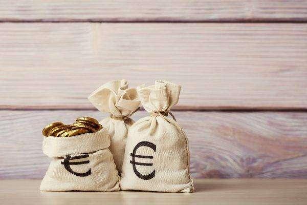 Money bags euros business